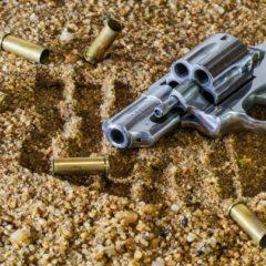 Nieco faktów o broni palnej